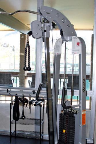 Gym Hoist  2