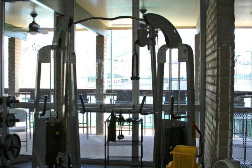 Gym Hoist Sys 3