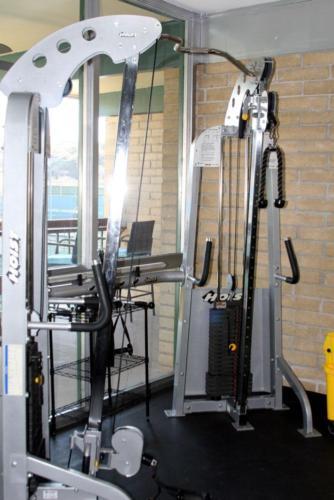Gym Hoist